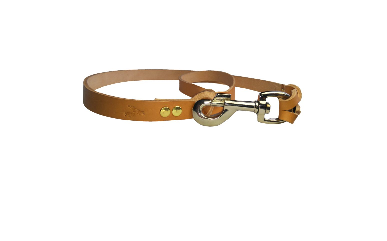 dog lead gun dog